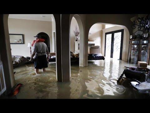 Majority of Harvey flood victims don't have flood insurance, expert says