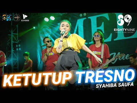 Download Lagu Syahiba Saufa Ketutup Tresno Mp3