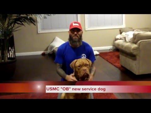 OB and Rudi the military veteran service dog