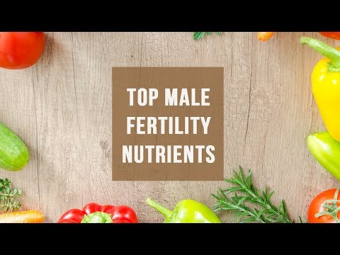 Top Male Fertility Nutrients