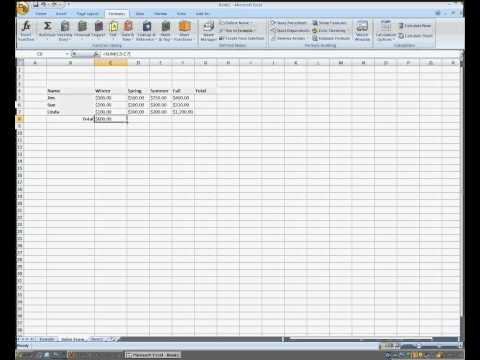 Using Auto Sum in Microsoft Excel 2007