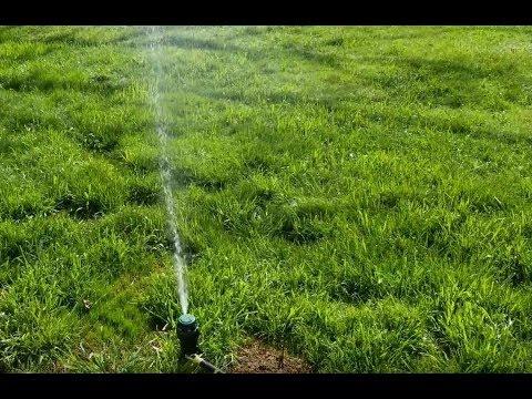 Sprinkler System Update