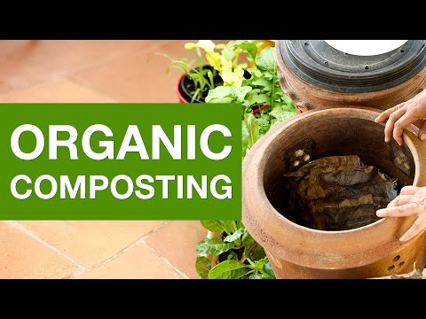 Reduce your organic waste by composting | Organic Terrace Garden
