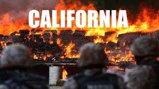 Las Pruebas de que Los INCENDIOS DE CALIFORNIA han sido PROVOCADOS.