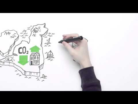 British Gas – Environmental and social obligations explained in less than 60 seconds