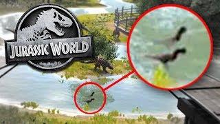 NEW DINOSAUR SPECIES - Jurassic World Evolution Update!