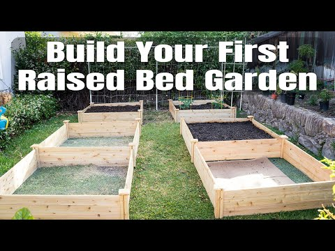 Raised Bed Gardening - How To Start A Garden With Raised Beds