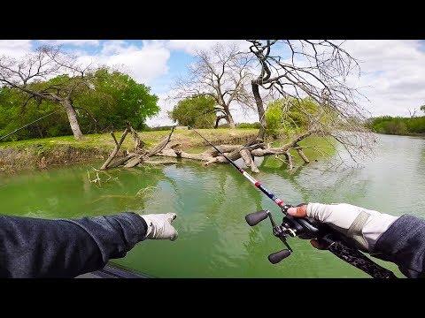 Exploring a New Creek that has BIG BASS