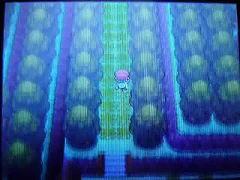 Pokemon Platinum: How to Use Pal Park