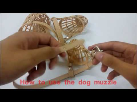How to use the dog muzzle