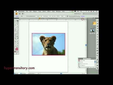 How to add a stroke to a raster in Illustrator