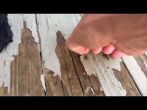 Help with removing deck paint stain!