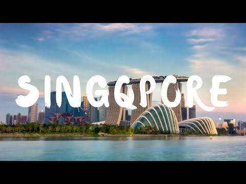 Singapore is on! 😍 | Pune to Singapore | Night Safari | Singapore Zoo