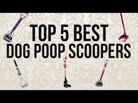 Top 5 Best Dog Poop Scoopers