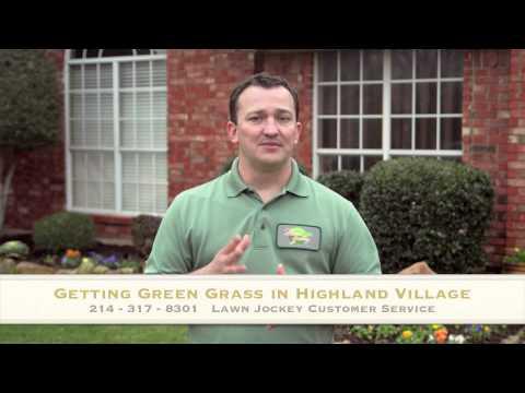 Get Green Grass in Highland Village