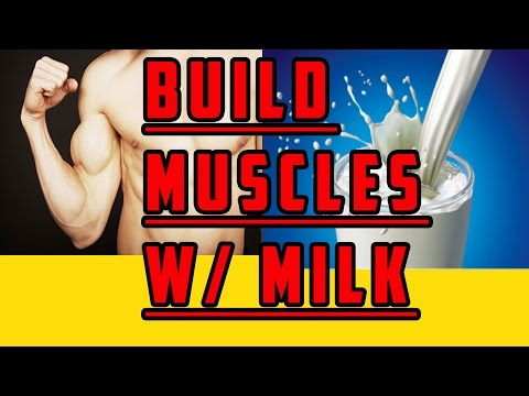 Build Muscles With Milk : Milk Review