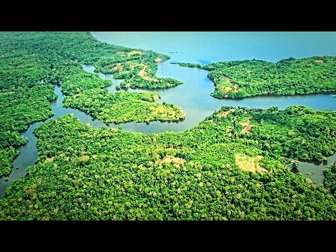 Brazil - Flight over the Amazon and Manaus HD