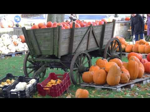 German Autumn Herbst Indian summer Impressions Video littleGasthaus
