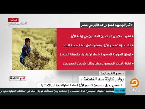 Xxx Mp4 الآثار الجانبية لمنع زراعة الأرز في مصر انفوجراف 3gp Sex