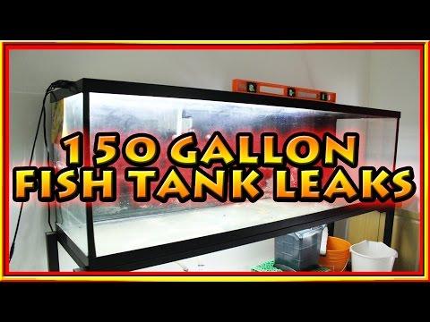150 Gallon Fish Tank Leaks