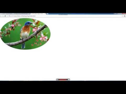 How to make rounded / Circle image in HTML/CSS radius in CSS3 [Ujjaval]