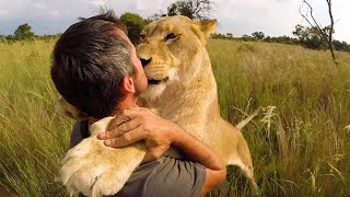 A Wonderful Life With Lions | The Lion Whisperer