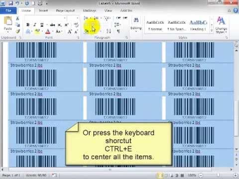 BarCodeWiz ActiveX Control - Barcode labels in Word