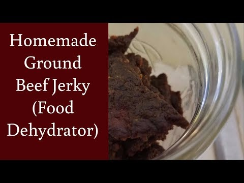 EASY Homemade Ground Beef Jerky in a Food Dehydrator