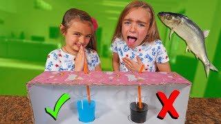 Youtube Video