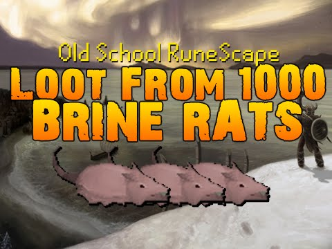 Old School RuneScape - Loot from 1000 Brine rats