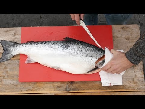 How To FILET a WHOLE SALMON - - Easy to do!