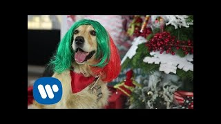 SIA – Puppies Are Forever @ Warner Music Italy
