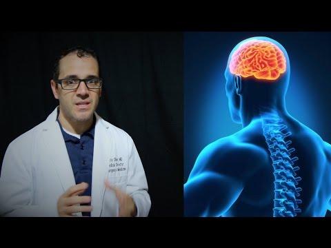 meningitis, encephalitis vs meningoencephalitis   PEV