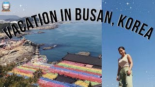 Download weekend in busan, korea 🚊 Video