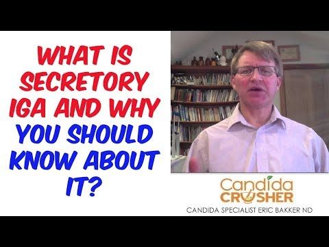 What Is Secretory IgA And Why You Should Know About It