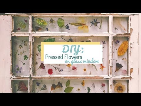 DIY Home: How to Tutorial, Pressed Flowers on Glass Surface