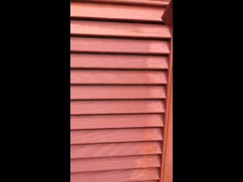 How to paint shutters