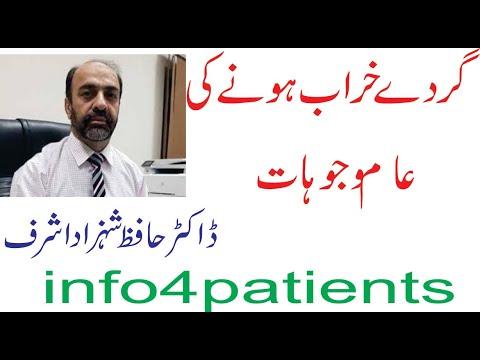 Kidney Failure Reason ( Urdu)