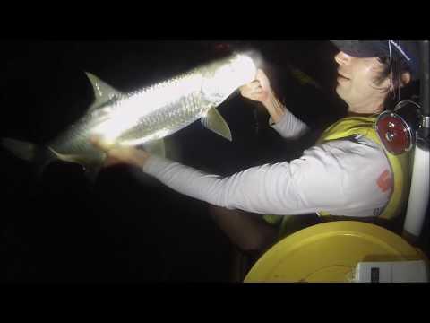 Barracuda Ate my Dinner!! (random fish)