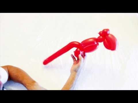Training Video #7 Toucan HD
