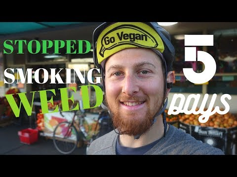 WHY I STOPPED SMOKING WEED // 5 DAYS NO CANNABIS UPDATE