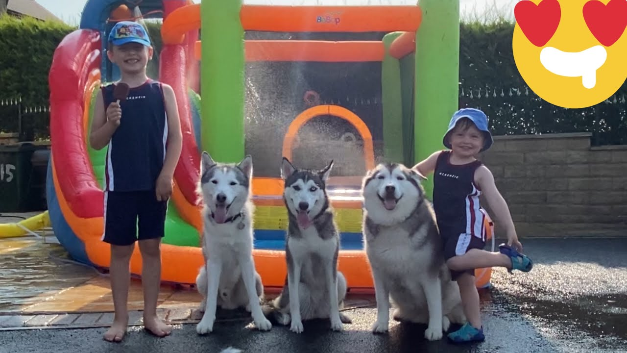 HUSKIES & BABY POOL PARTY TIME!!! [CUTEST VIDEO EVERR!!!]