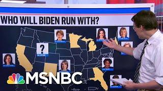 Breaking Down Joe Biden's Running Mate Shortlist | MSNBC