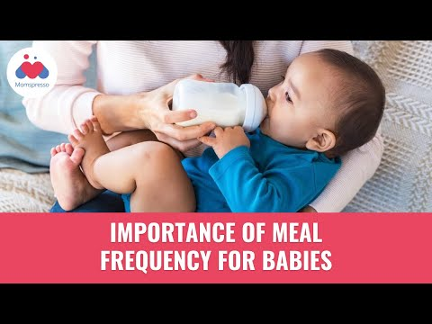 What Is A Healthy Meal Frequency For Babies