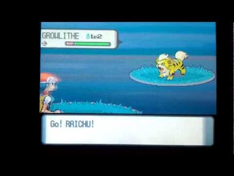 Shiny Growlithe - Pokemon Diamond Chain # 33