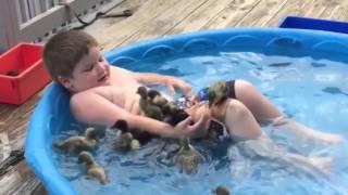 ☺ AFV Part 341 - Adorable Pets & Animals (Funny Clips Fail Montage Compilation)