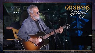 Yusuf / Cat Stevens – Songwriters Hall of Fame Induction 2019 (Full Performance)