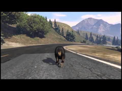 GTA 5 Cinematic Movie |