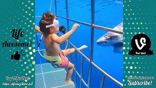 Funny Animals Reaction - Try Not To Laugh Shark With Baby