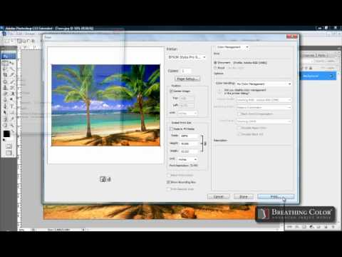 Epson Print Settings on Breathing Color Media (No ICC Profile)